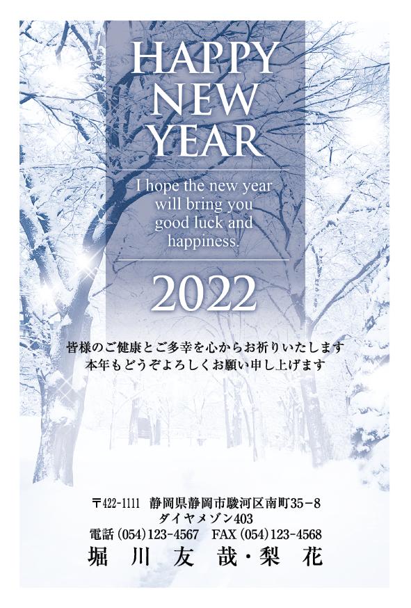 神秘的な樹氷が美しい干支なしフォト(カードボックスの年賀状)